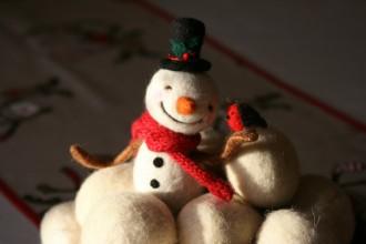 Hóember és vörösbegy (1)